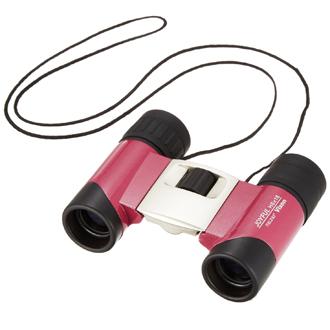 Vixen Binoculars Joyful H6×18 DCF
